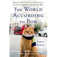 World Bob