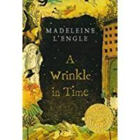 wrinkle book